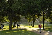Oval with students walking on the paths